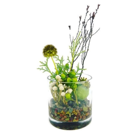 Seasonal Plant Arrangement in Vase