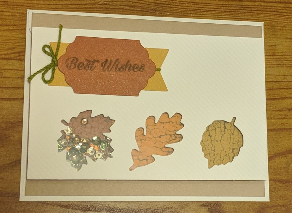 Best Wishes Sequins Card
