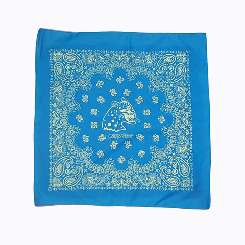 Light Blue Bandana /Paliacate azul claro