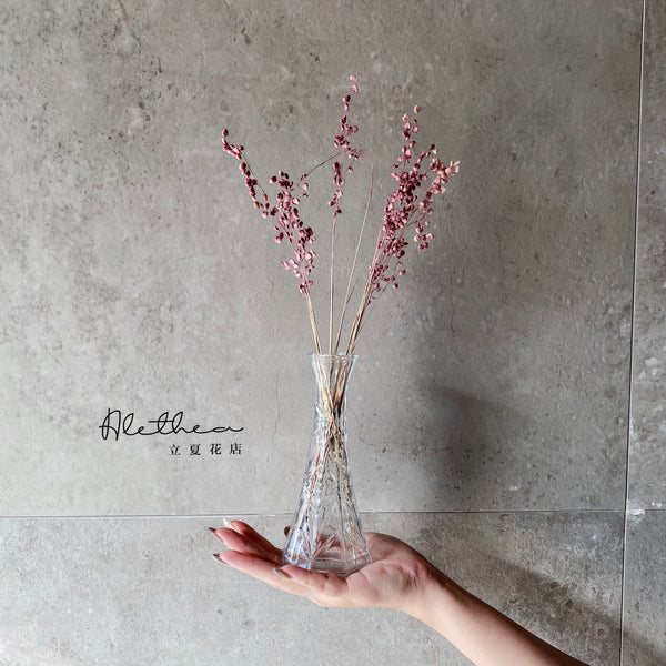 Dried Pink Grass Jar - Dried Flower