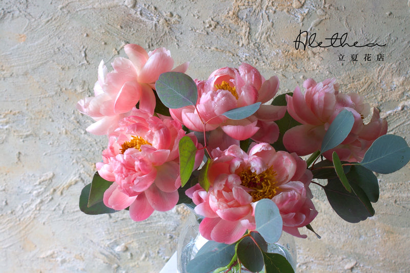 Mother's Peony Arrangement - Coral - Mother's Day 2021