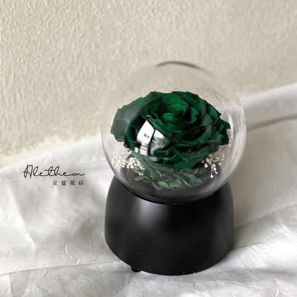Preserved Rose Music Box - Preserved Flower