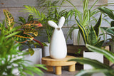Animal Collection - Ceramics Pot - Accessories