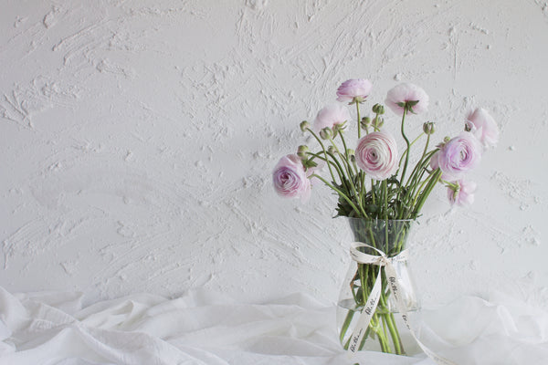 Ranunculus - Lavender - Farm Direct