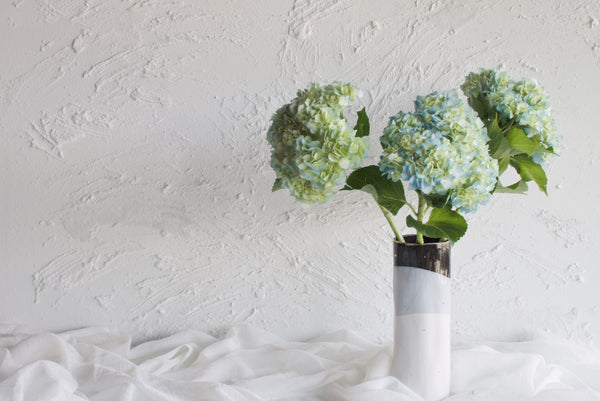 Hydrangea - Blue - Farm Direct
