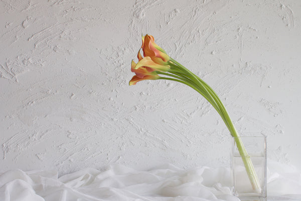 Calla Lily - Orange - Farm Direct