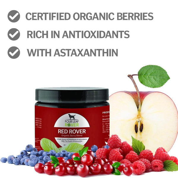 Red Rover Antioxidant Power Berry Blend