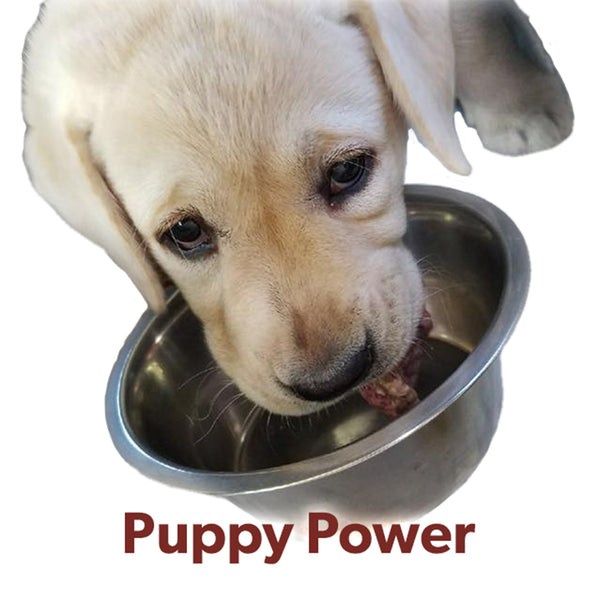 Puppy Power Raw Box