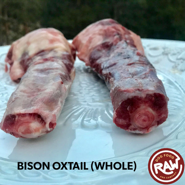 Bison Oxtail