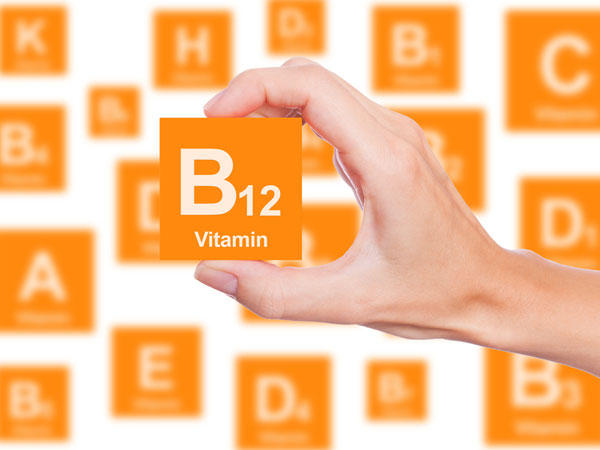 vitamin B12 cricket protein