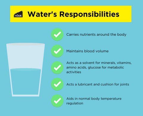 Näak Nutrition Blog | How to Hydrate for Athletes | Water for Exercise