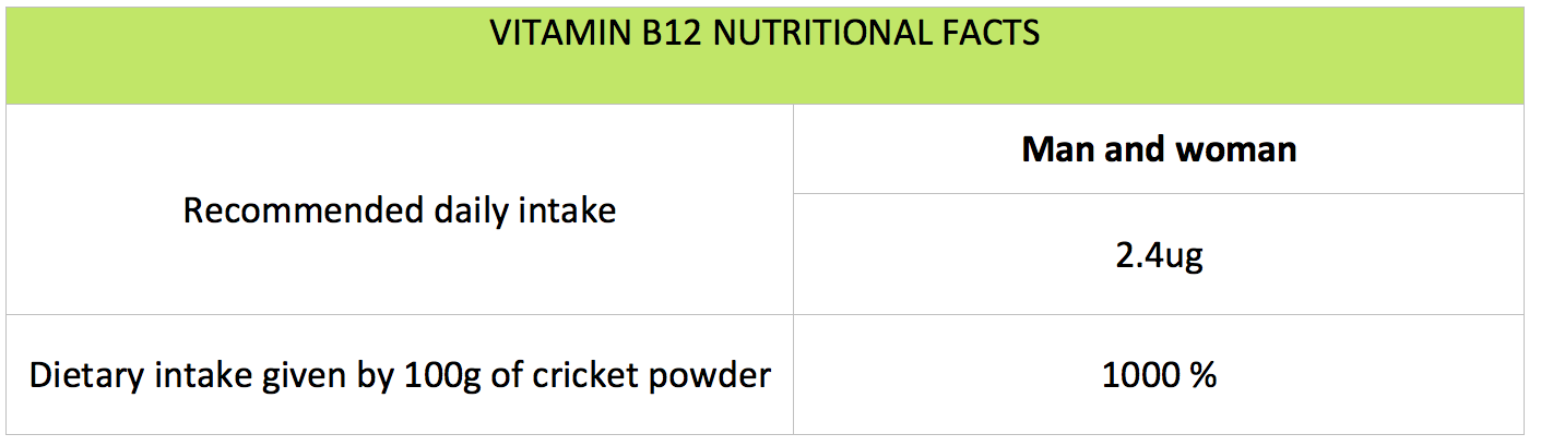 nutrition - athlete - B12 vitamin