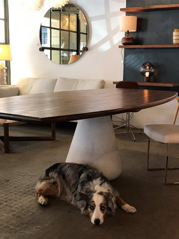 ROOM's showroom with table and dog below