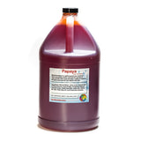 Papaya shave ice flavor concentrate gallon