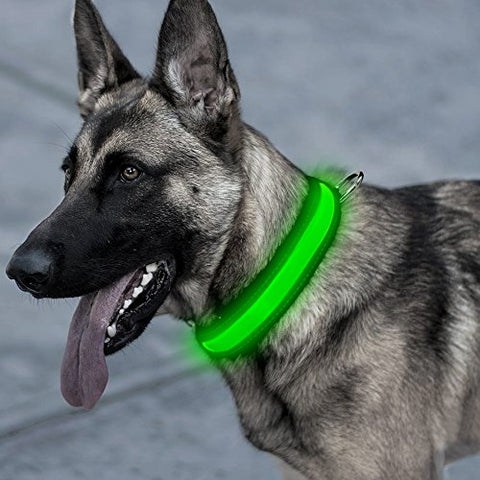 LED Dog Collar Pet Collars For Outdoor (Green, Pink), Brandlet, Dog Collar, Brandlet