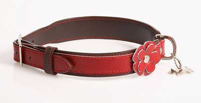 Hamish McBeth Red Flower Collar - Smitten Pets
