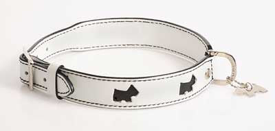 Hamish McBeth Hamish White Scottie Dog Collar - Smitten Pets