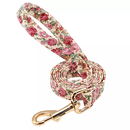 Beige Rose in Gold Dog Lead