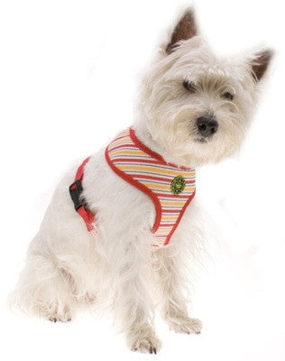 Hamish McBeth Red Stripe Freedom Dog Harnesses - Smitten Pets