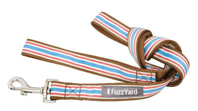 Glam Rock 'Fletch' Multi-Stripe Nylon Dog Lead - Smitten Pets