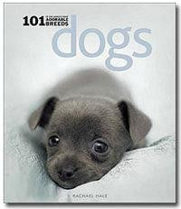 Dogs: 101 Adorable Breeds - Smitten Pets