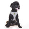 Hamish McBeth Black and White Houndstooth Dog Harnesses