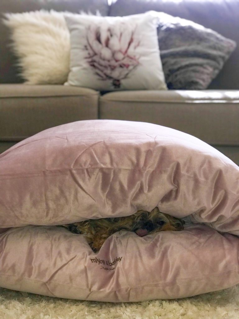 Miyow & Barkley Velvet Snuggle Pod in Mallow Mauve
