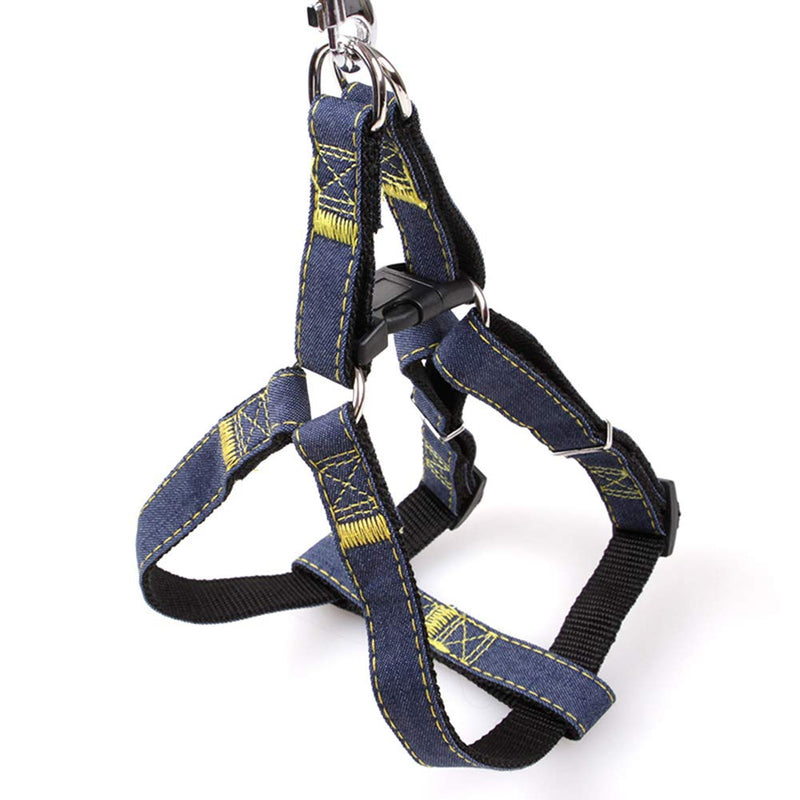 Denim Harness