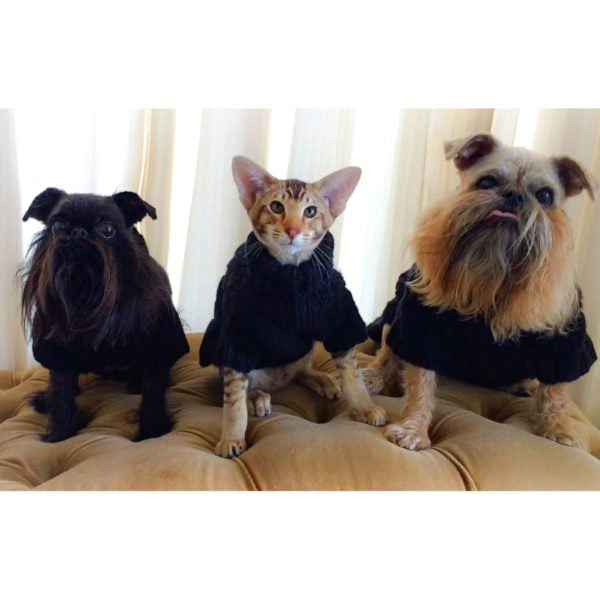 Miyow & Barkley Kehena Sweater