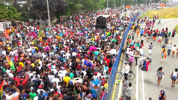 crowd at Caribana