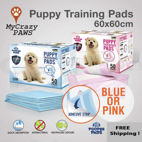 Puppy Training Pads / Kitten Training Pads Indoor Toilet Super Absorbent Size 60cm x 60cm - 100PC
