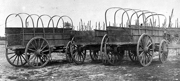 Uncovered supply wagon and 2 horse team standing