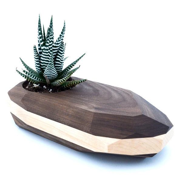 Geometric Wooden Cactus Planter | Unbox Happiness
