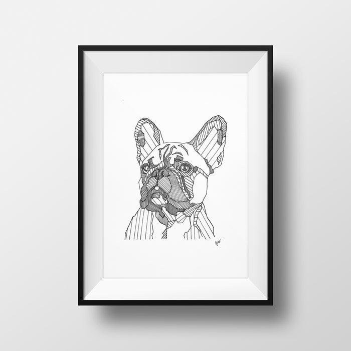 Frenchie - DG Designs