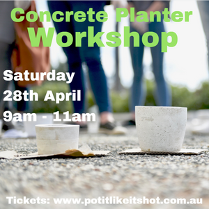 Concrete Planter Workshop - Fremantle April 2018