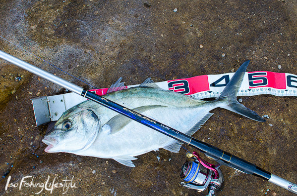 Report: Monster Silver Trevally on ISO