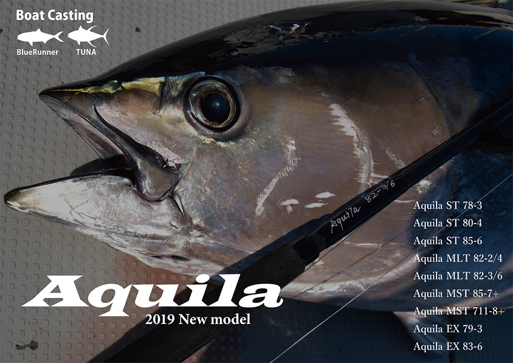 Ripple Fisher Aquila MLT 82-3/6