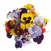 EDIBLE PANSY FLOWERS x 8g