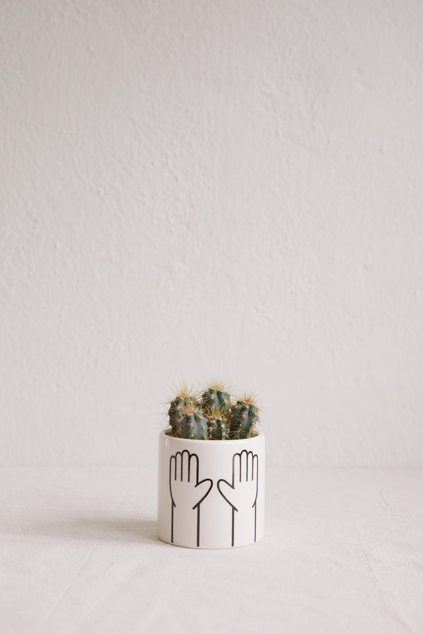 'High Ten' Mini Pot