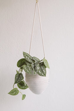 Hanging Basket Natural