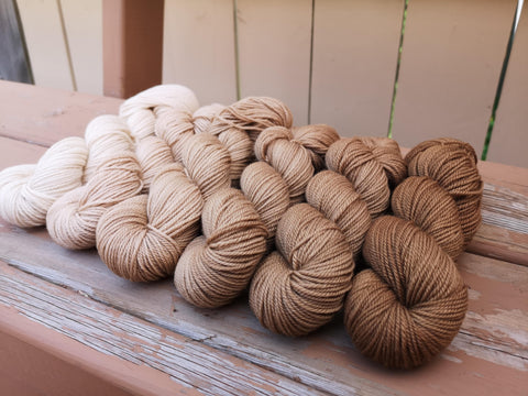 Naturally Dyed Black Walnut Gradient Fingering Weight Sock Set
