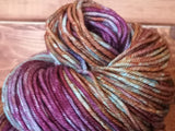 Stuck At Home Posh Worsted Hand Dyed Yarn