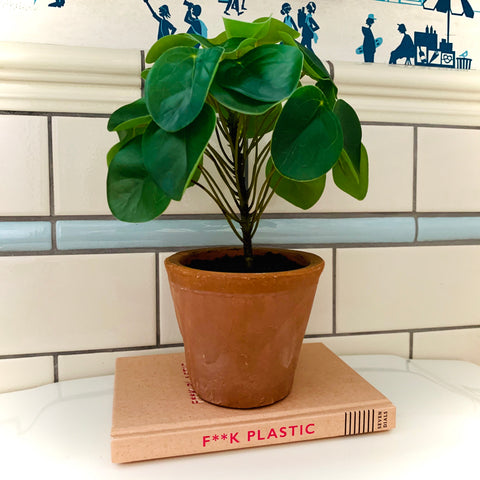 Faux Potted Pilea (Money) Plant - mylesfromhome.co.uk