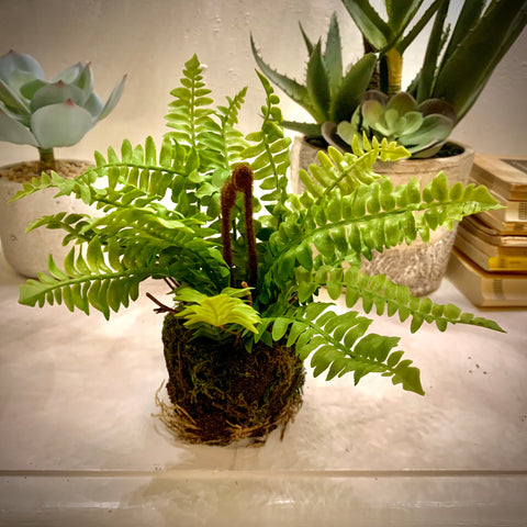Faux Fern in Soil - mylesfromhome.co.uk