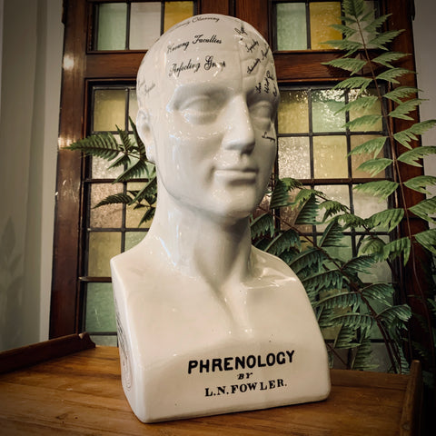 Large Antiqued Ceramic Phrenology Head - mylesfromhome.co.uk