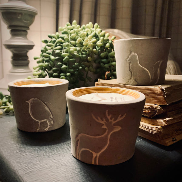 St. Eval Orange & Cinnamon Reindeer Candle Pot