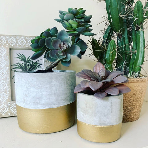 Potted Faux Succulent - mylesfromhome.co.uk