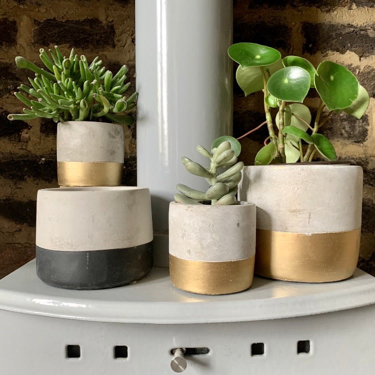 Cement Planter: Small Black Dip - mylesfromhome.co.uk