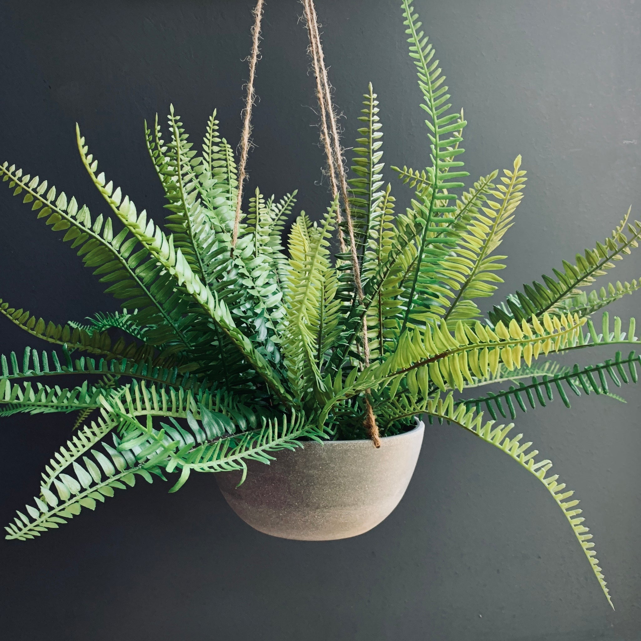 Hanging Faux Fern in a Pot - mylesfromhome.co.uk