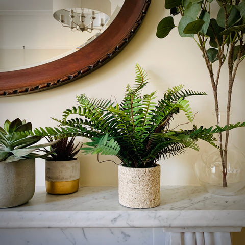 Faux Potted Fern - mylesfromhome.co.uk